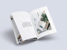 mag concept / chelsea lasalle #layout #magazine #type
