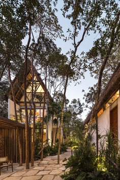 Outdoor, Wood Patio, Porch, Deck, Gardens, Walkways, and Trees Photo 3 of 23 in Jungle Keva by JESUS ACOSTA