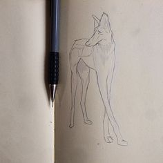 Pencil, Sketch, Illustration, Dog, Micheal Hanly