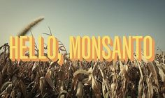 hello, monsanto | Flickr - Photo Sharing! #midwest #monsanto #field #typography