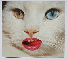 tumblr_lwfd578mDa1qzm3keo1_500.jpg (Imagem JPEG, 500x443 pixéis) #collage #art