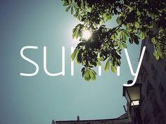 photography #photo #sunny