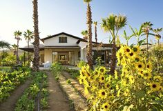 Flora Farms Culinary Cottages in Baja California, Mexico