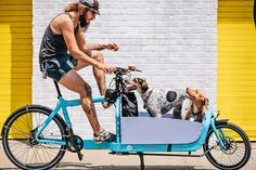 #bicycle #cycling #dogs #portrait #cyclist #photo