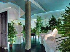 jungle leaving room #margiela #jungle