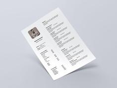 Free Super Simple Resume Template with Elegant Design