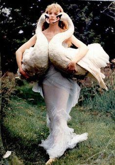 Sara Lindholm #fashion #swans