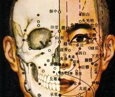 GIOR KONDUCTA - angularcircles: (via gristlebrains) (via... #japan #anatomy #vintage