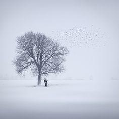 halluzination, Artwork by Ellger Christine #foog #tree