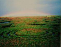 Triple Circlerainbow land art