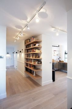 Bookcase, shelves
