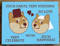 If you're thinking of writing your wedding wishes and trying to put a smile on the faces of the couple at the same time, then you're in the right place. There's nothing like good humor or comic relief to make your card stand out, especially if you're a close friend or family.