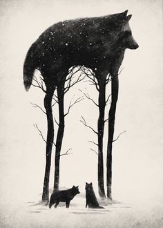 negative space, wolf, winter, snow, ice
