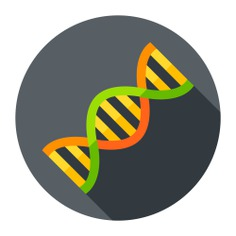 See more icon inspiration related to dna, healthcare and medical, genetical, dna structure, deoxyribonucleic acid, biology, education and science on Flaticon.
