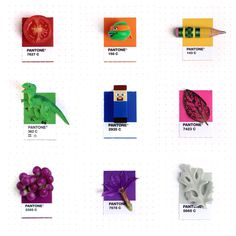 Graphic Designer Inka Mathew Matches Everday Objects to Pantone Colors
