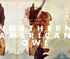VIOLENCE GRAPHIQUE #owl #girl #book #avian #mountains
