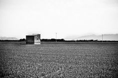 All sizes | ... | Flickr - Photo Sharing! #photography #white #field #black