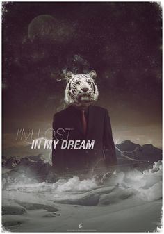 Lost in my dream on the Behance Network #poster #dream #tiger