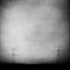In The Distance, processing by Leda Siloto