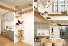 Asahi Kasei's Plus-Nyan House features furniture for cats so the living environment can equally meet the separate needs of people and their #modern #lifestyle #design #home #product #furniture #industrial #style