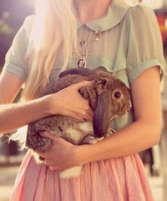 girl with rabbit #fashion #rabbit