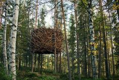 Sweden's Treehotel, a Getaway for Forest Sprites Who Only Wear Black | Co.Design #sweden #architecture #treehotel