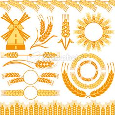 Wheat Royalty Free Stock Vector Art Illustration