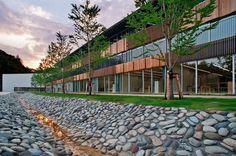 teikyo10 #school #university #elementary #tokyo #architecture #teikyo #japan