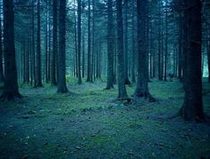 Photography by Nick Meek » Creative Photography Blog #inspiration #photography