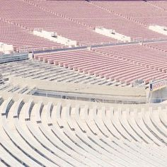 empty pink stadium | sallie harrison