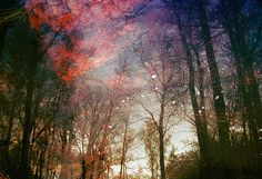 FIne Art Photography by Polina Washington #inspiration #photography #art #fine