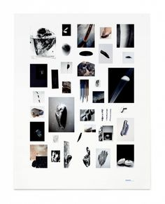 MUSSEL POSTER BY FLATNESS IN SPACE