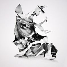 Christina Empedocles #deer #white #empedocles #black #illustration #crumpled #and #christina