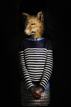 Fashionably Dressed Animals Photographed by Miguel Vallinas #photography