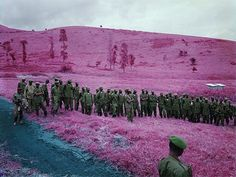 Richard Mosse - BOOOOOOOM! - CREATE * INSPIRE * COMMUNITY * ART * DESIGN * MUSIC * FILM * PHOTO * PROJECTS #kodak #mosse #congo #richard #film #infrared