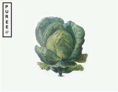 Puree branding & packaging by Studio Ahamed #old #look #illustration #vegetable #logo