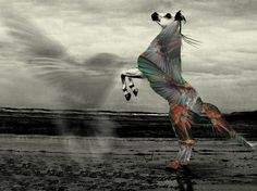 Lou Madhu #abstract #horse #humming #bird #stallion #lou #art #madhu #surreal #collage