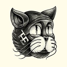 #illustration #cat