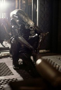 The Behind the Scenes Pic of the Day has a wonderful defense mechanism. You don't dare kill it! -- Ain't It Cool News: The best in movie, #alien