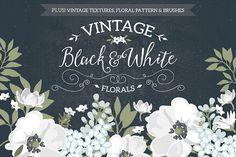 Vintage Black & White Florals - Illustrations