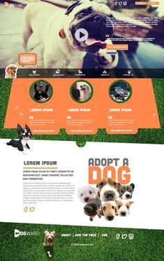 Layout Concept for Dogs Adoption Website. #design #dogs #orange #graphic #website #concept #layout