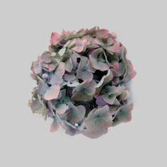 01_LR #flower #circle