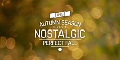Perfect Fall Desktop font « MyFonts #font #setting #fall #autumn #type #typography