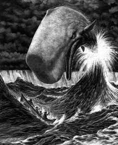 Satire #whale #illustration #moby #dick