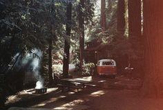 tumblr_lq50eckUXV1qdoa2ro1_500.jpg (JPEG Image, 500x338 pixels) #mood #forest #camp