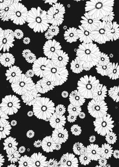 Flowers. #blackandwhite #illustration #flowers #graphic #minimal #jameszanoni