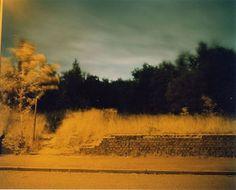 Google Image Result for http://25.media.tumblr.com/tumblr_kzq5v2lSKo1qabu3po1_500.jpg #photography #richard #billingham