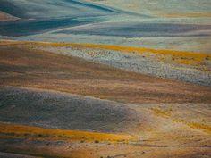 Photograph by Pale Grain #field #print #photograph #artwork #knoll #braid #nature