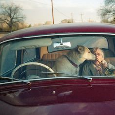 IRMA'S WORLD - Vice Magazine #dog #woman #humor #patrick duncan #irmas world