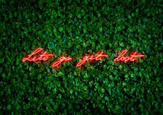 Olivia Steele | PICDIT #art #neon #light #sculpture